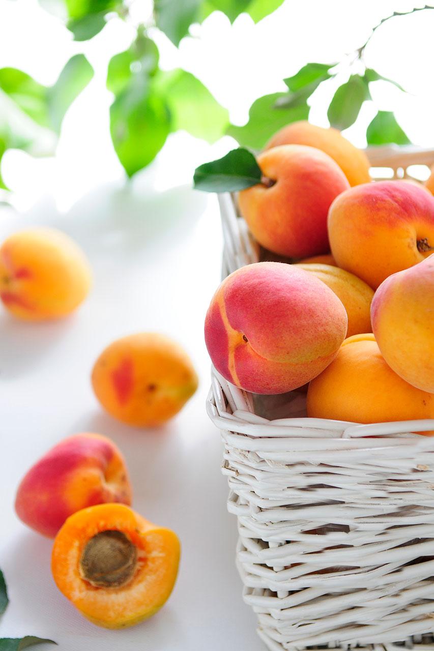 apricots-2