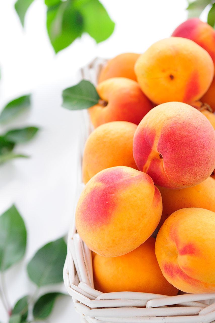 apricots-7
